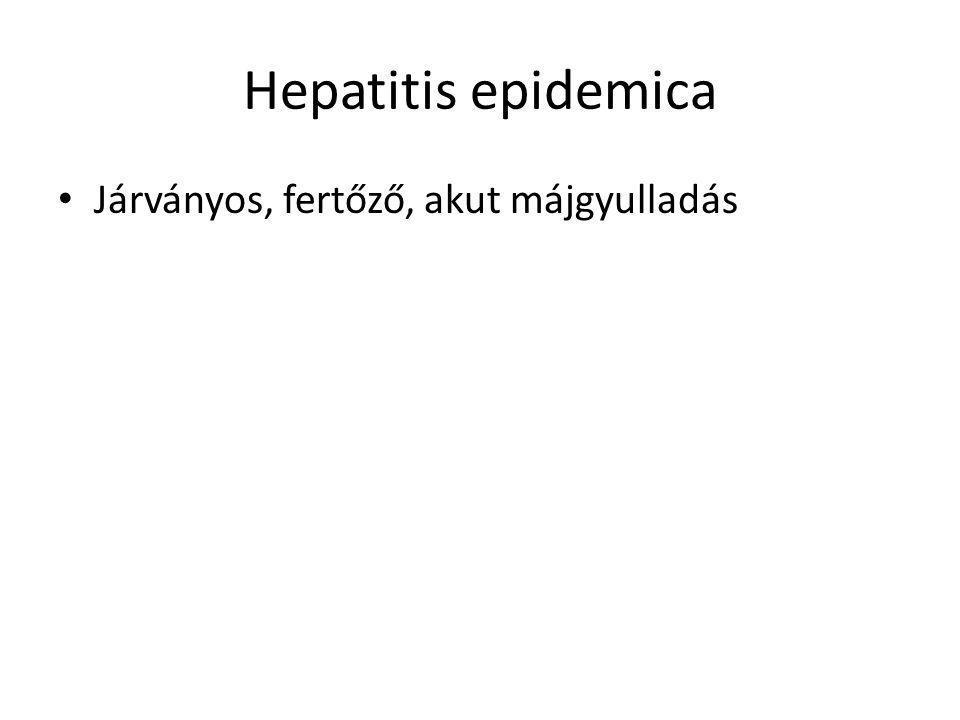 Hepatitis epidemica Járványos, fertőző, akut májgyulladás