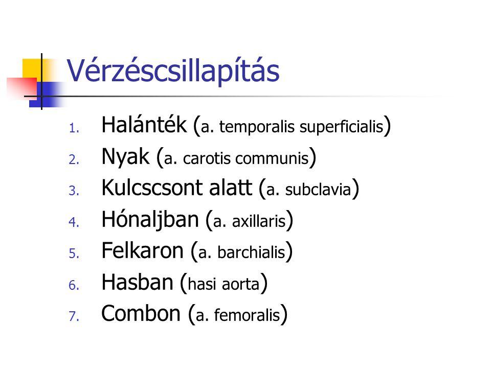Vérzéscsillapítás Halánték (a. temporalis superficialis)