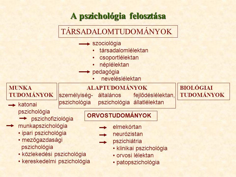 A pszichológia felosztása