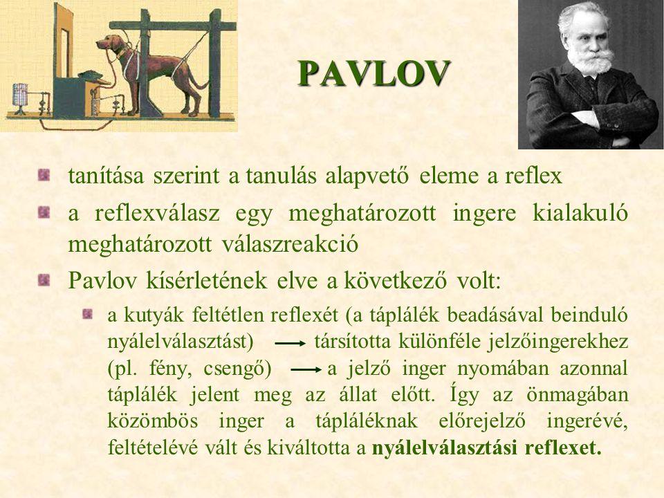 PAVLOV tanítása szerint a tanulás alapvető eleme a reflex