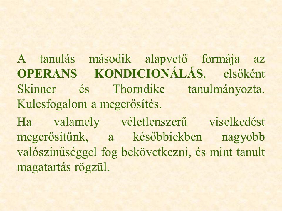 A tanulás második alapvető formája az OPERANS KONDICIONÁLÁS, elsőként Skinner és Thorndike tanulmányozta. Kulcsfogalom a megerősítés.