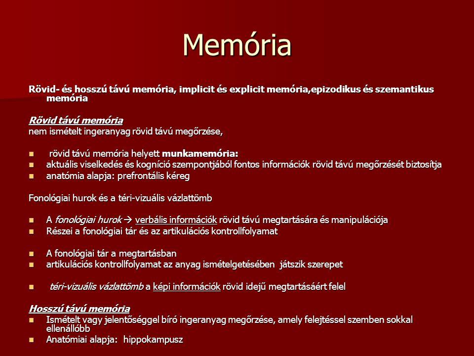 Memória Rövid- és hosszú távú memória, implicit és explicit memória,epizodikus és szemantikus memória.