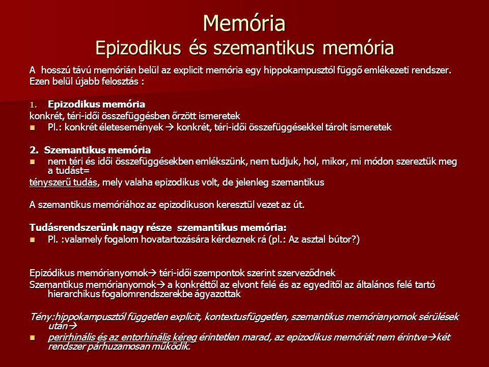 Memória Epizodikus és szemantikus memória