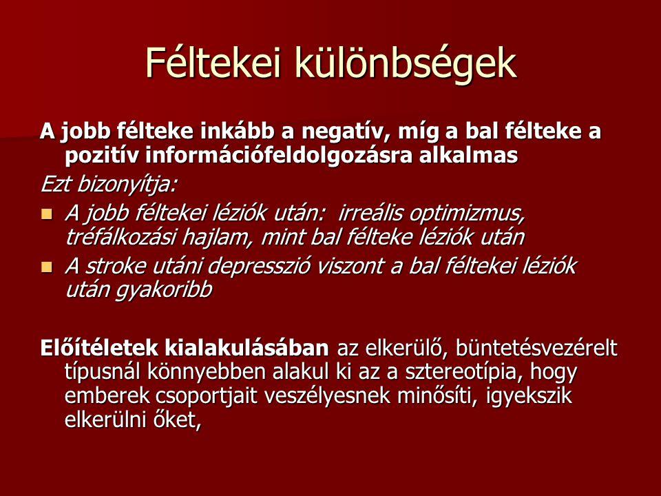 Féltekei különbségek A jobb félteke inkább a negatív, míg a bal félteke a pozitív információfeldolgozásra alkalmas.