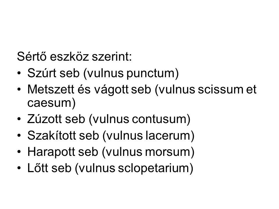 Sértő eszköz szerint: Szúrt seb (vulnus punctum) Metszett és vágott seb (vulnus scissum et caesum)