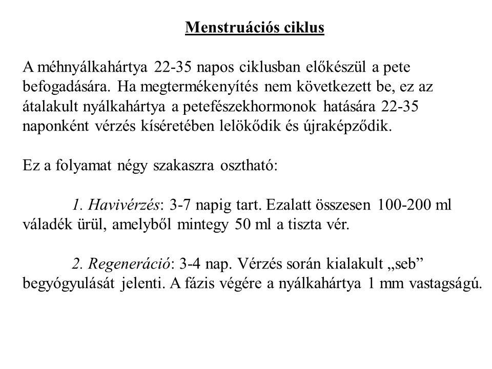 Menstruációs ciklus