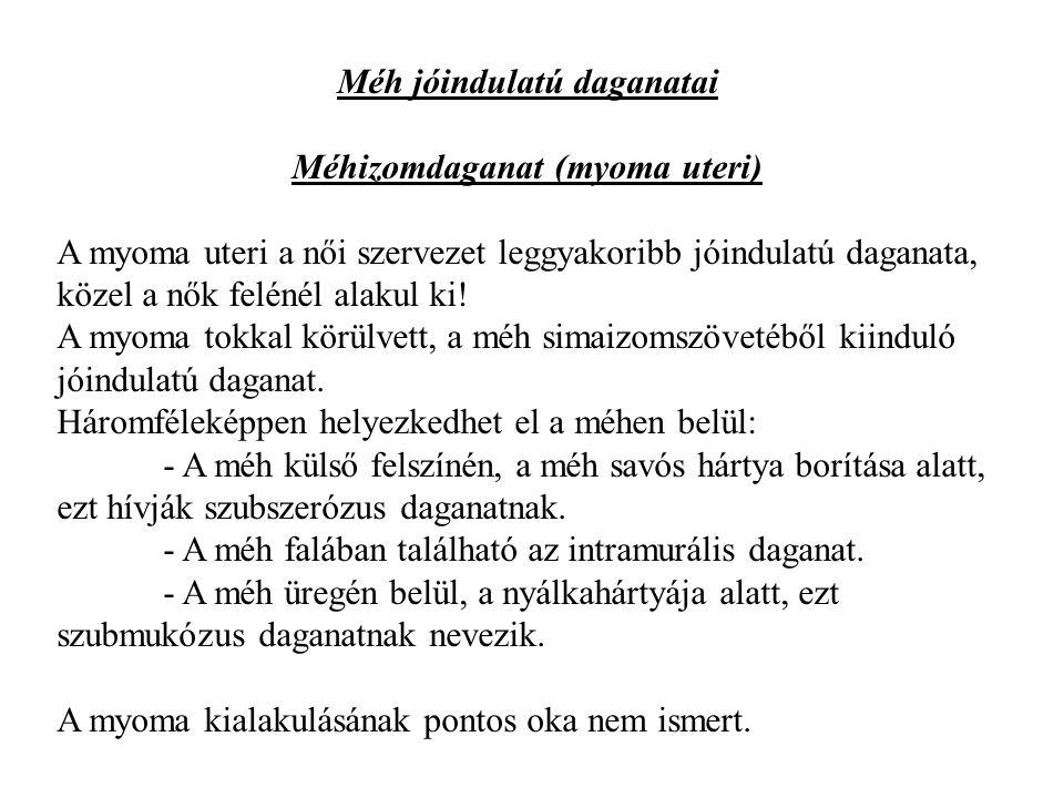 Méh jóindulatú daganatai Méhizomdaganat (myoma uteri)
