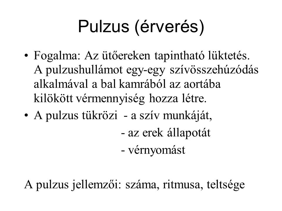 Pulzus (érverés)