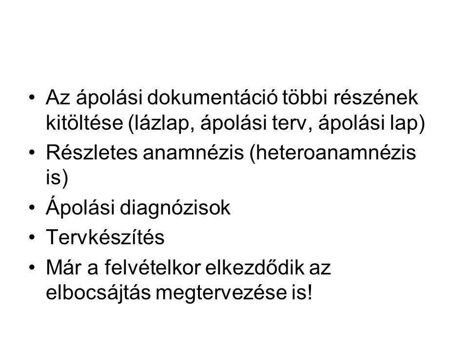 Az ápolási dokumentáció többi részének kitöltése (lázlap, ápolási terv, ápolási lap)