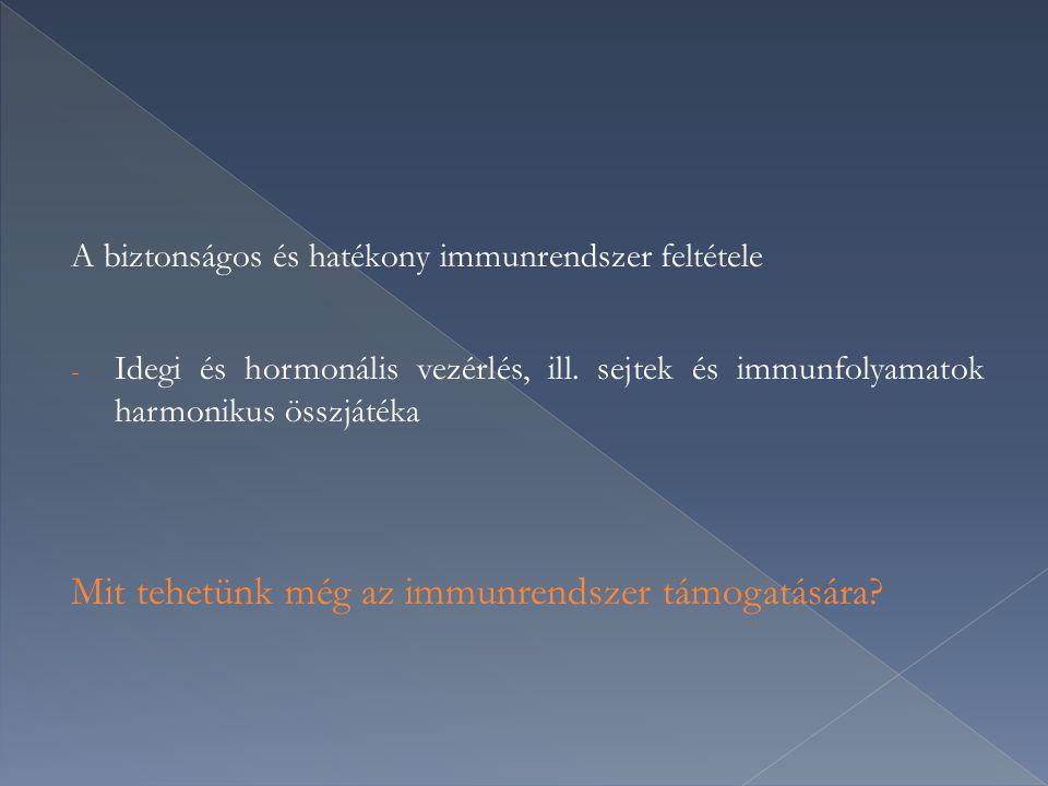Mit tehetünk még az immunrendszer támogatására