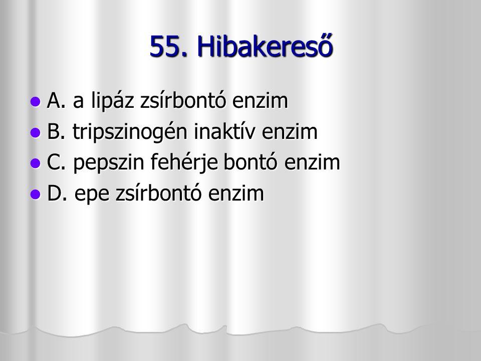 55. Hibakereső A. a lipáz zsírbontó enzim