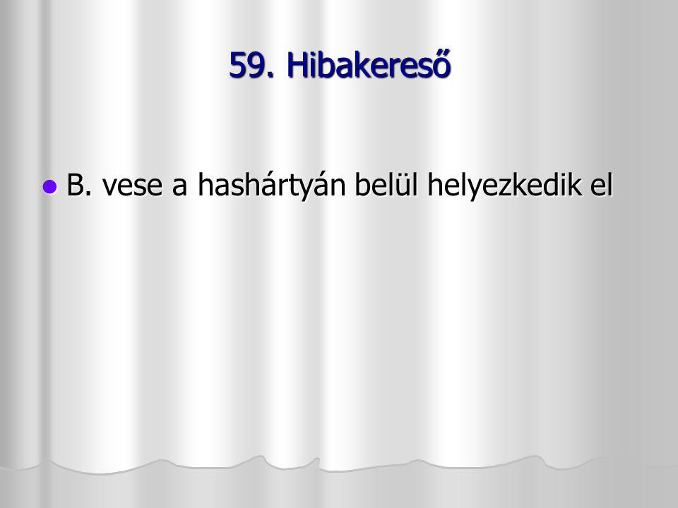 59. Hibakereső B. vese a hashártyán belül helyezkedik el