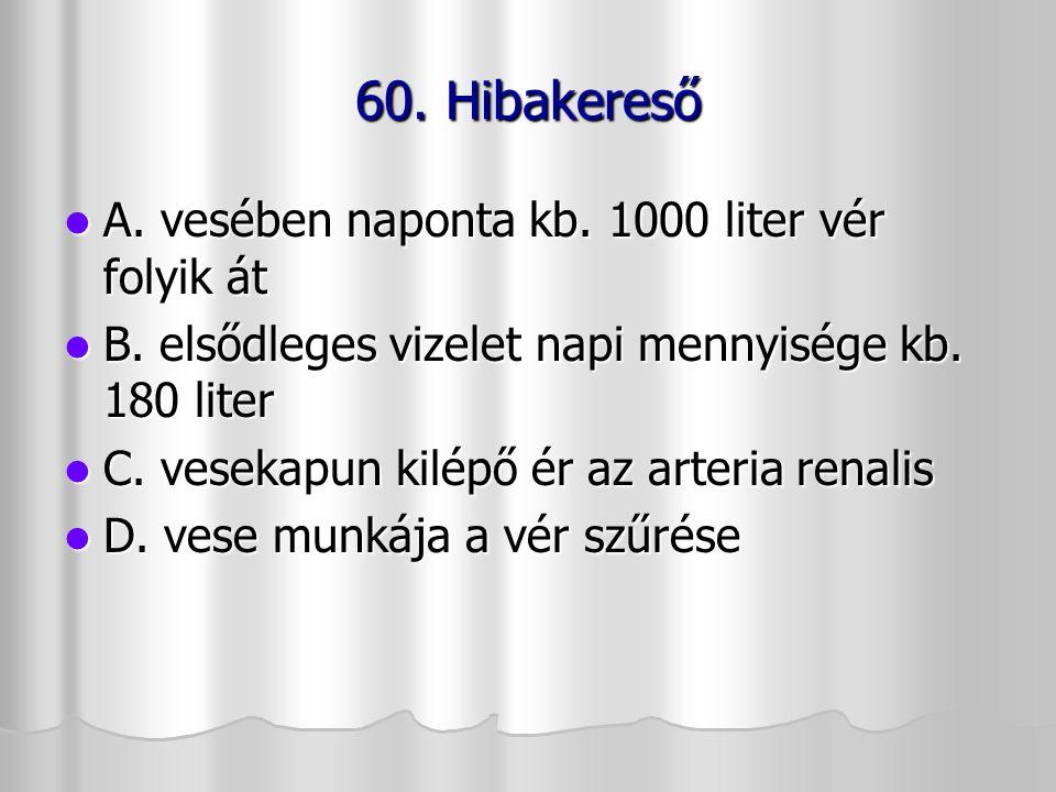 60. Hibakereső A. vesében naponta kb. 1000 liter vér folyik át