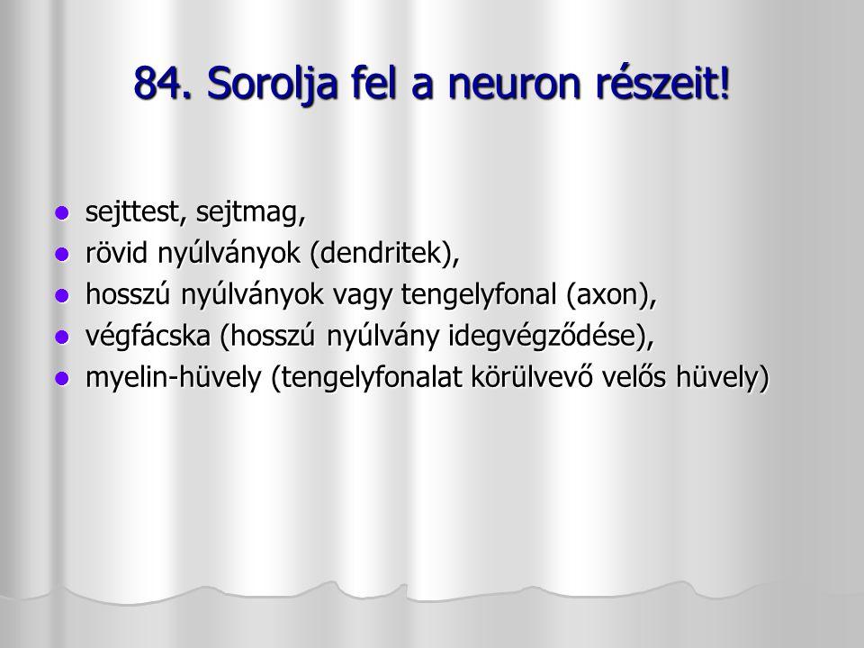84. Sorolja fel a neuron részeit!