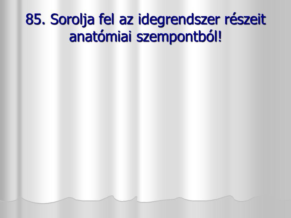 85. Sorolja fel az idegrendszer részeit anatómiai szempontból!