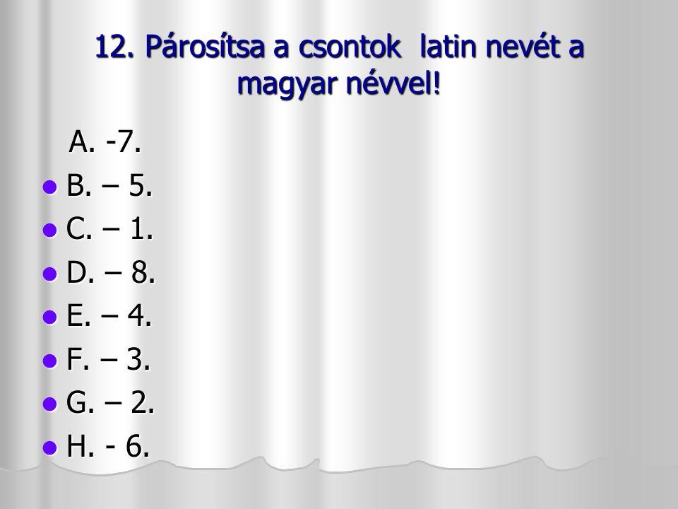 12. Párosítsa a csontok latin nevét a magyar névvel!