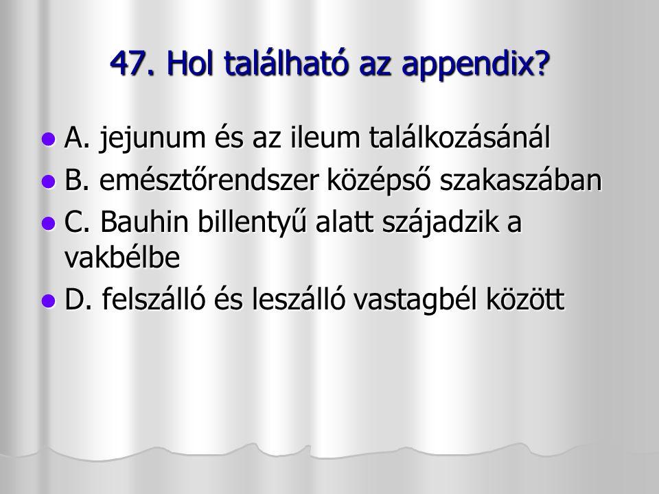 47. Hol található az appendix