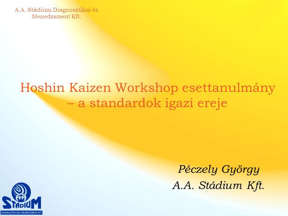 Hoshin Kaizen Workshop esettanulmány – a standardok igazi ereje