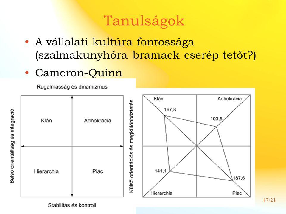 Tanulságok A vállalati kultúra fontossága (szalmakunyhóra bramack cserép tetőt ) Cameron-Quinn