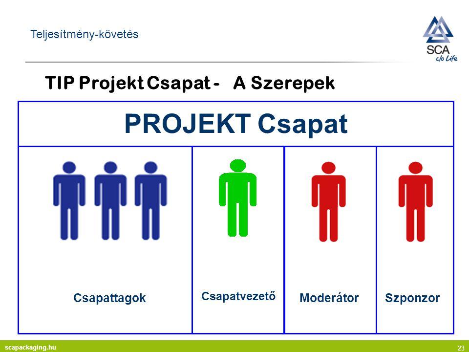TIP Projekt Csapat - A Szerepek