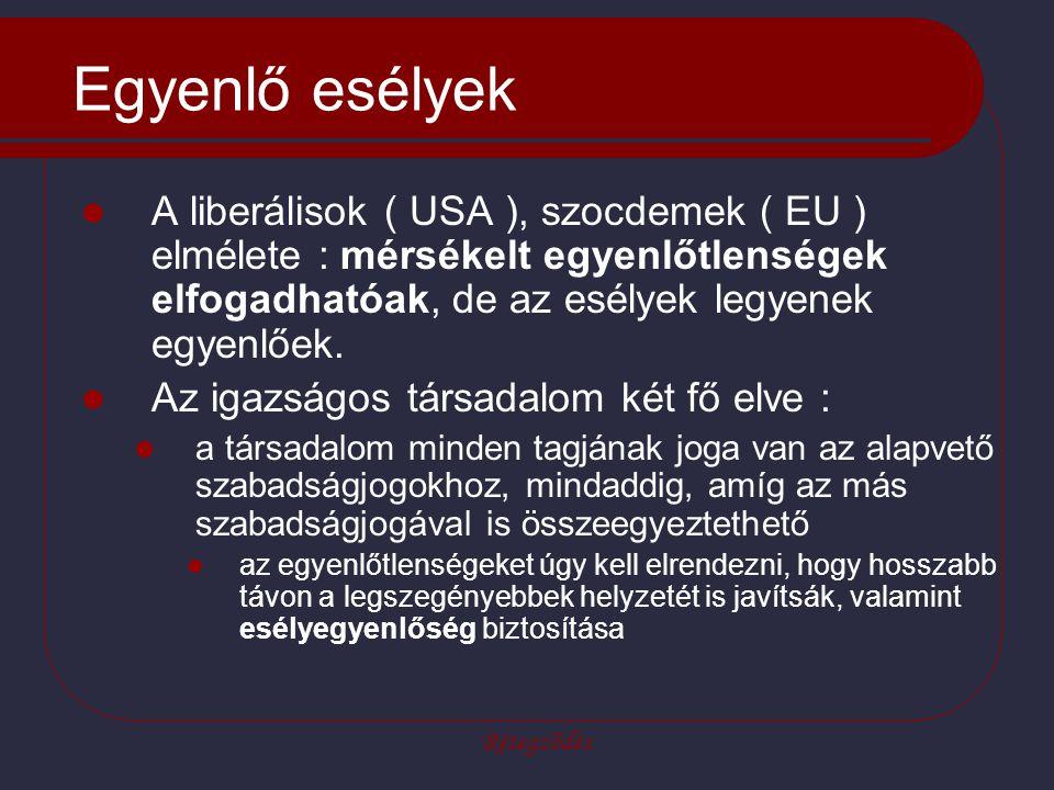 Egyenlő esélyek A liberálisok ( USA ), szocdemek ( EU ) elmélete : mérsékelt egyenlőtlenségek elfogadhatóak, de az esélyek legyenek egyenlőek.