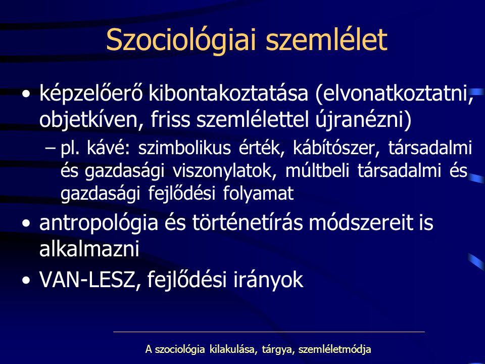 Szociológiai szemlélet