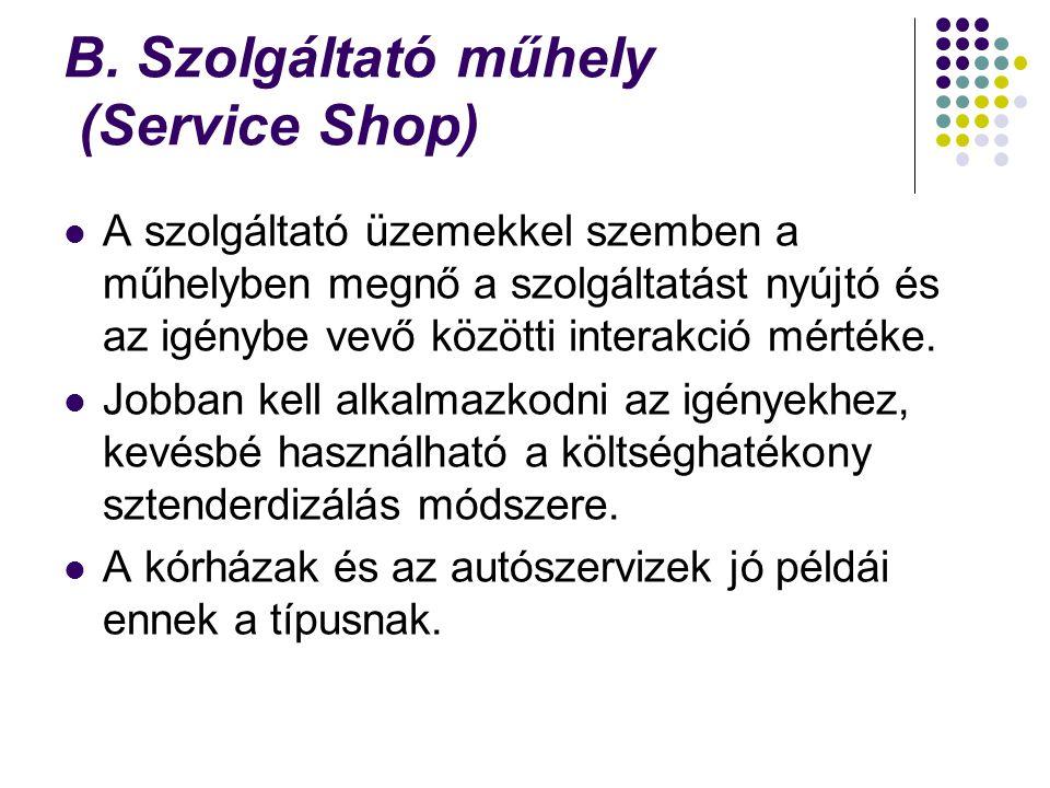 B. Szolgáltató műhely (Service Shop)
