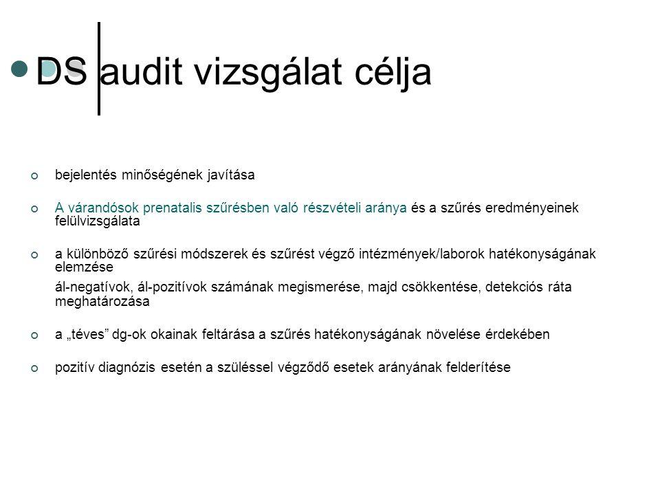 DS audit vizsgálat célja