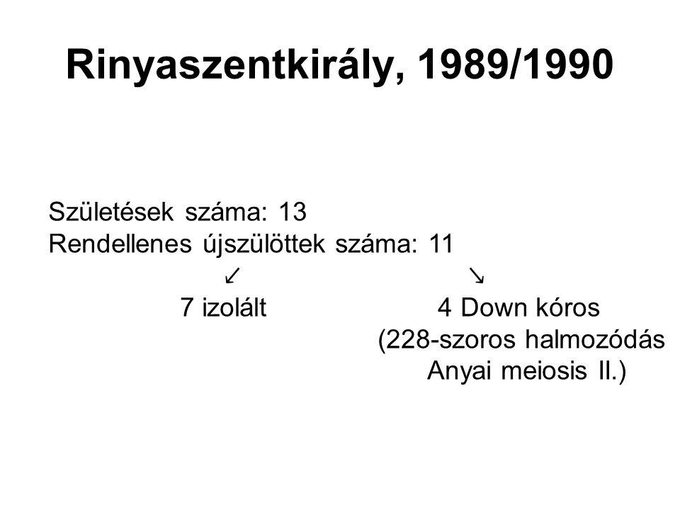 Rinyaszentkirály, 1989/1990 Születések száma: 13