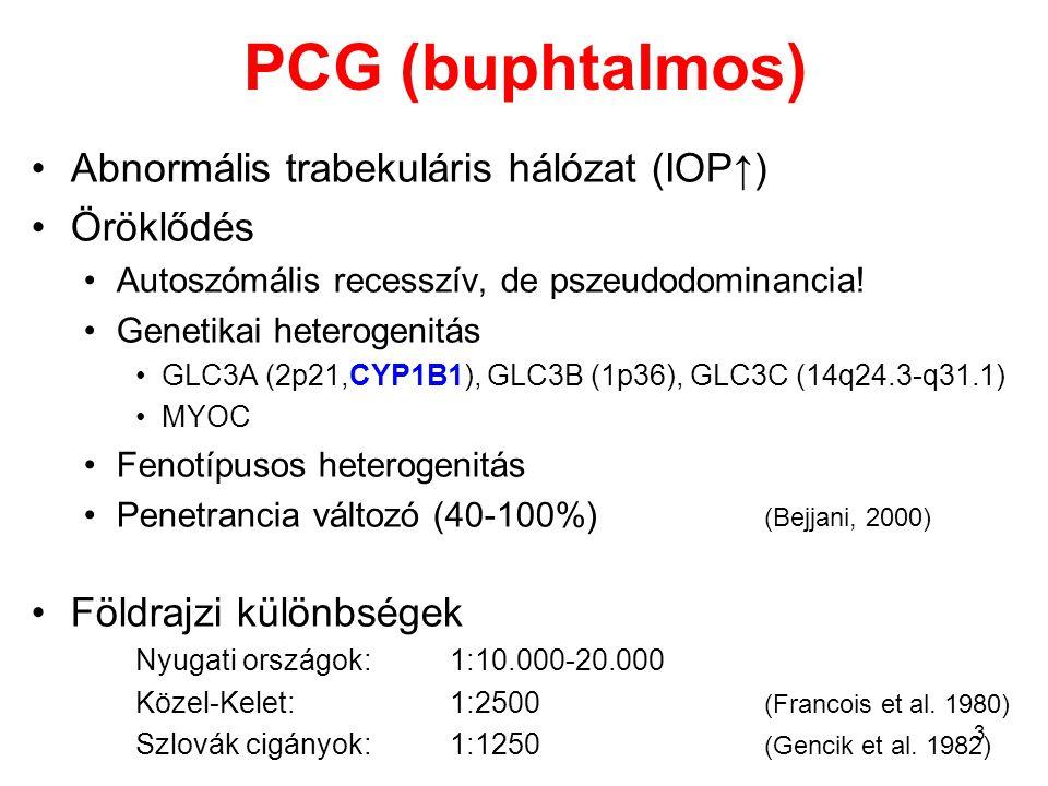 PCG (buphtalmos) Abnormális trabekuláris hálózat (IOP↑) Öröklődés