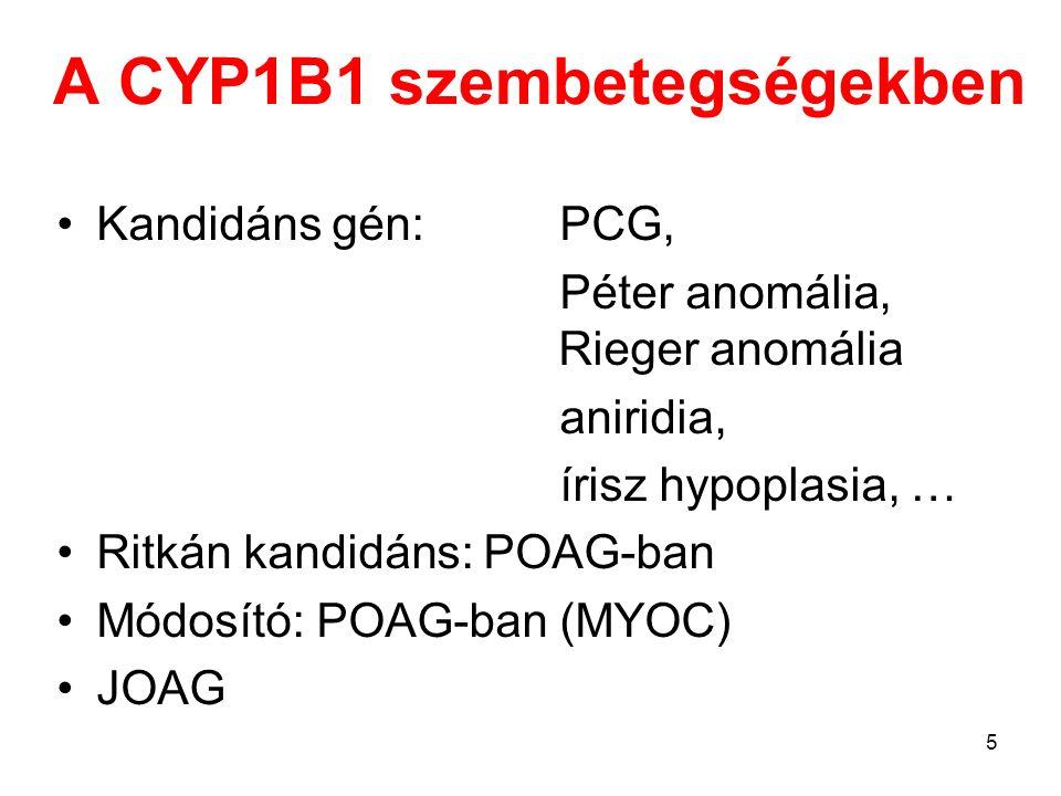 A CYP1B1 szembetegségekben