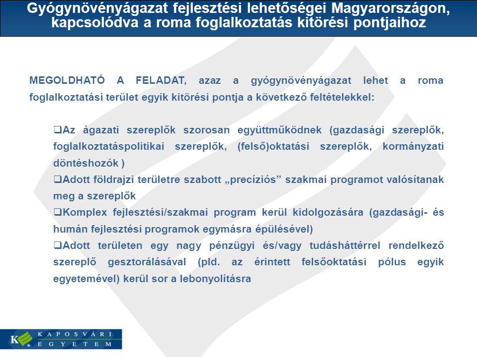 Gyógynövényágazat fejlesztési lehetőségei Magyarországon, kapcsolódva a roma foglalkoztatás kitörési pontjaihoz