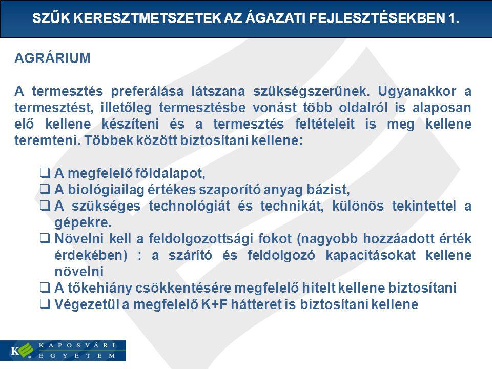 SZŰK KERESZTMETSZETEK AZ ÁGAZATI FEJLESZTÉSEKBEN 1.
