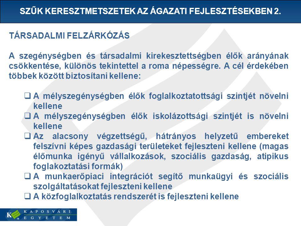 SZŰK KERESZTMETSZETEK AZ ÁGAZATI FEJLESZTÉSEKBEN 2.