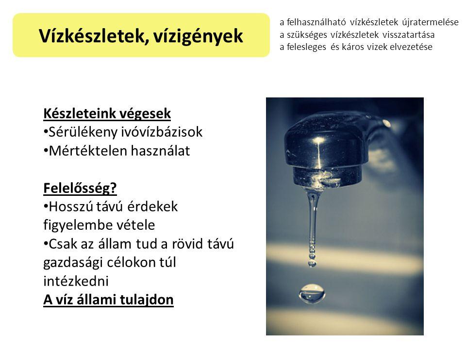 Vízkészletek, vízigények