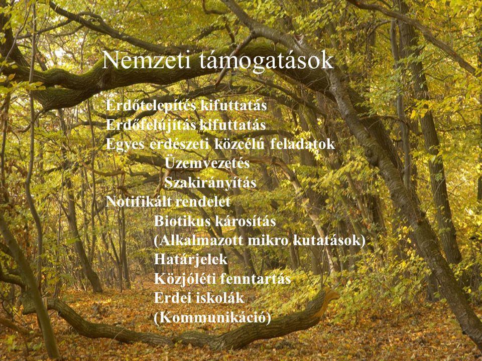 Nemzeti támogatások Erdőtelepítés kifuttatás Erdőfelújítás kifuttatás