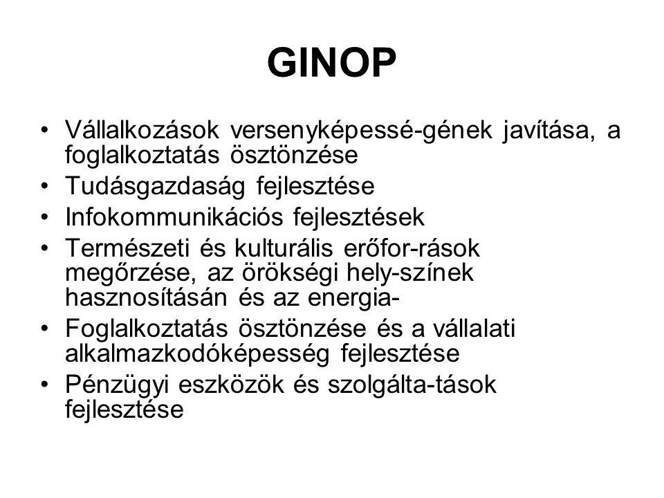 GINOP Vállalkozások versenyképessé-gének javítása, a foglalkoztatás ösztönzése. Tudásgazdaság fejlesztése.