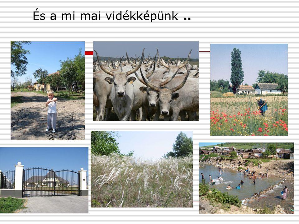 És a mi mai vidékképünk ..