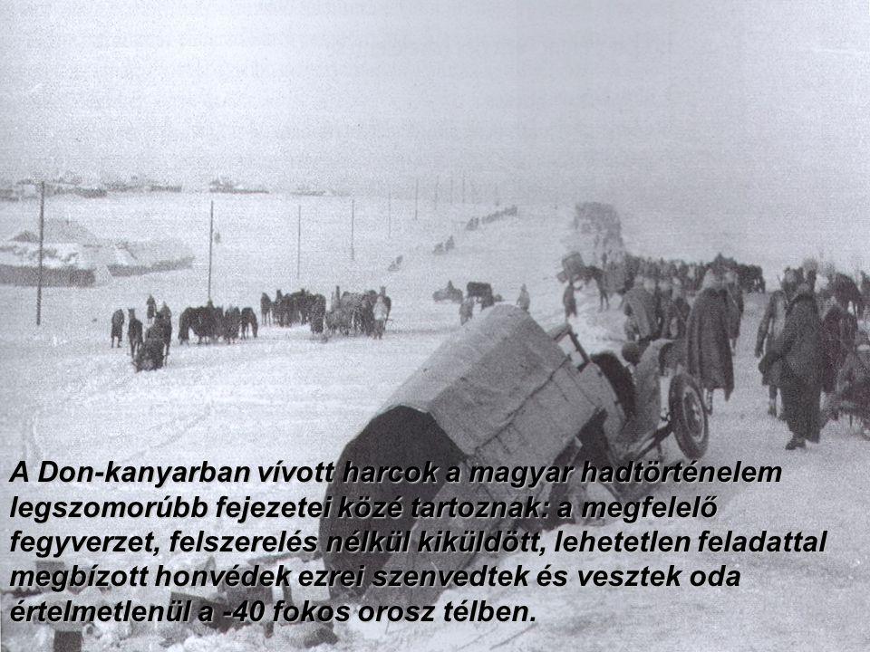 A Don-kanyarban vívott harcok a magyar hadtörténelem legszomorúbb fejezetei közé tartoznak: a megfelelő fegyverzet, felszerelés nélkül kiküldött, lehetetlen feladattal megbízott honvédek ezrei szenvedtek és vesztek oda értelmetlenül a -40 fokos orosz télben.