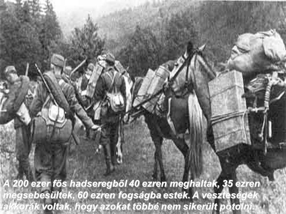 A 200 ezer fős hadseregből 40 ezren meghaltak, 35 ezren megsebesültek, 60 ezren fogságba estek.