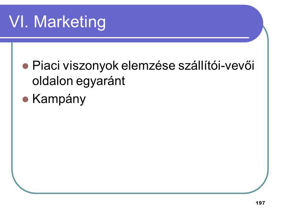 VI. Marketing Piaci viszonyok elemzése szállítói-vevői oldalon egyaránt Kampány