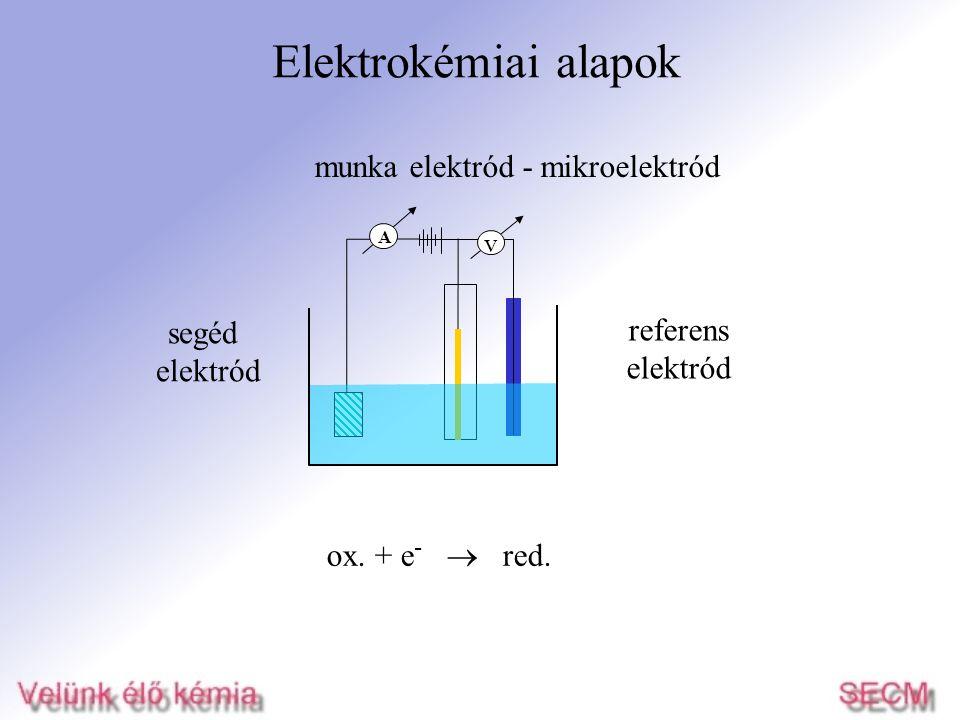 Elektrokémiai alapok munka elektród - mikroelektród segéd referens