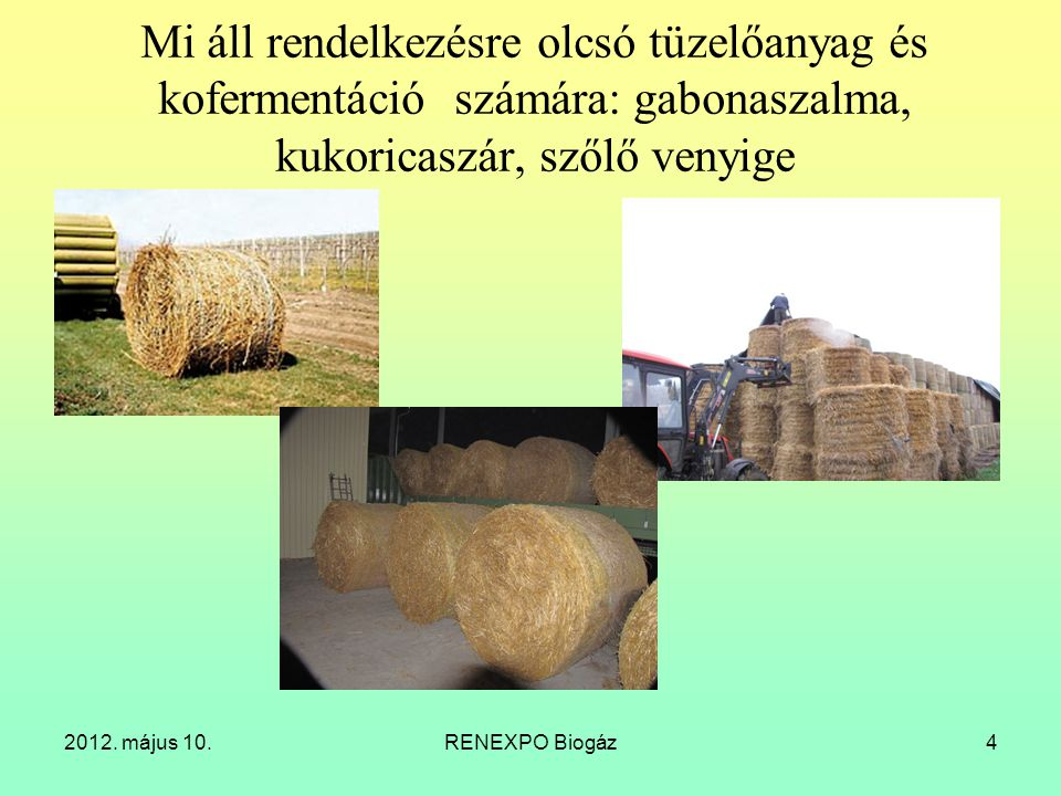 Mi áll rendelkezésre olcsó tüzelőanyag és kofermentáció számára: gabonaszalma, kukoricaszár, szőlő venyige