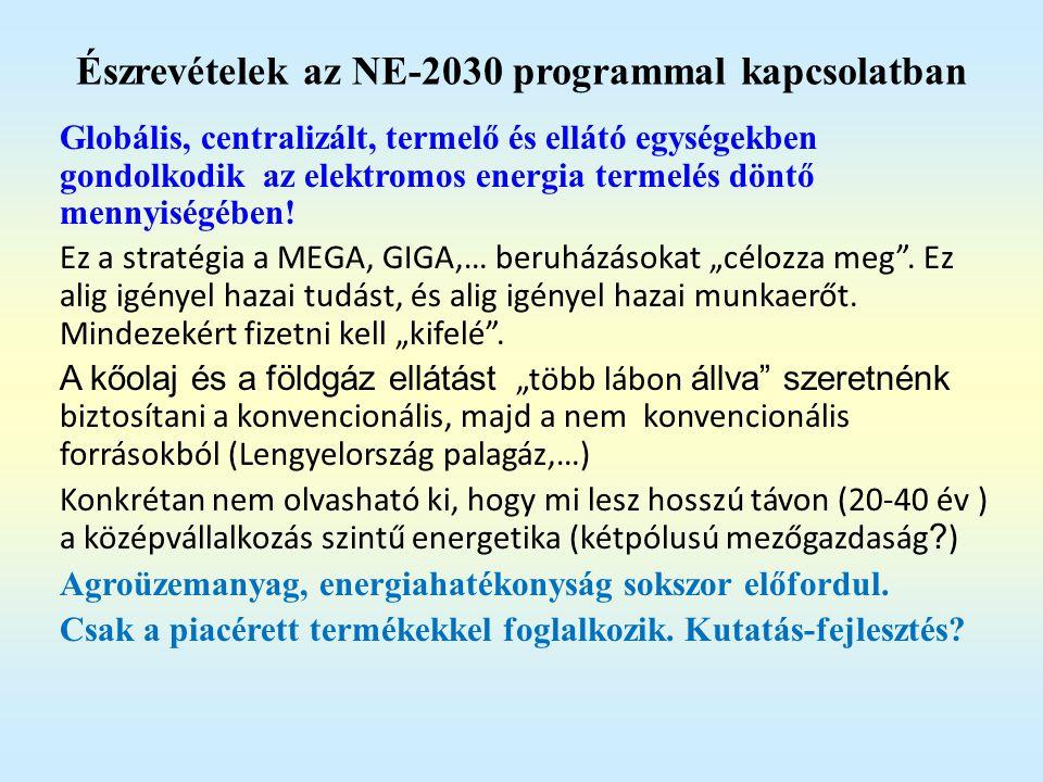 Észrevételek az NE-2030 programmal kapcsolatban