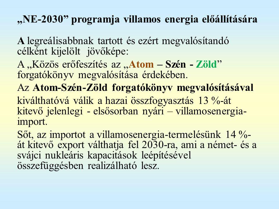 """""""NE-2030 programja villamos energia előállítására"""