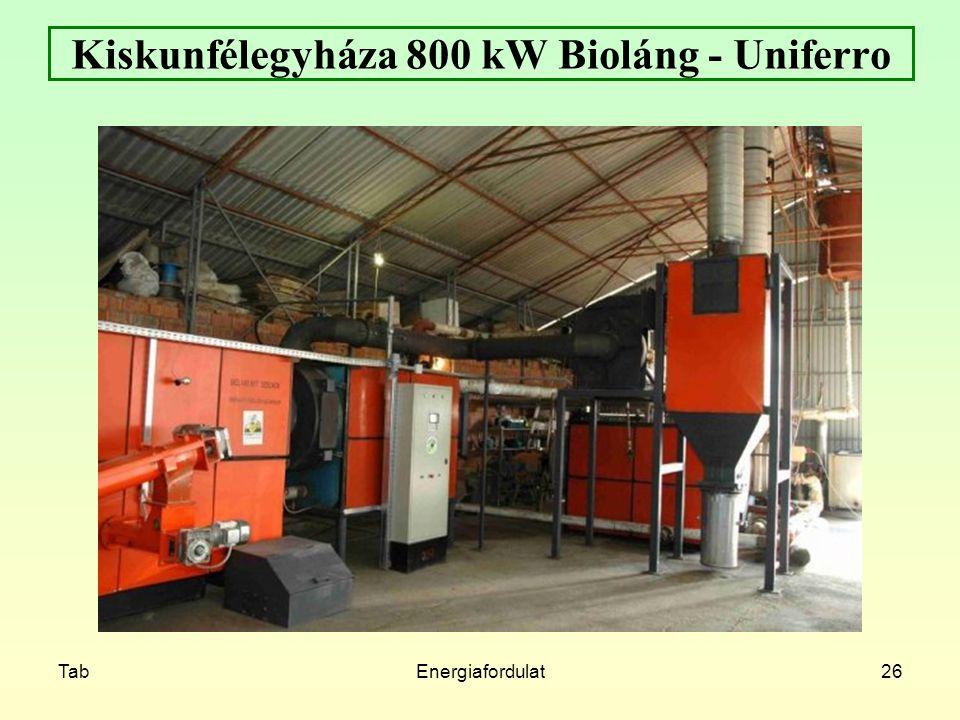 Kiskunfélegyháza 800 kW Bioláng - Uniferro