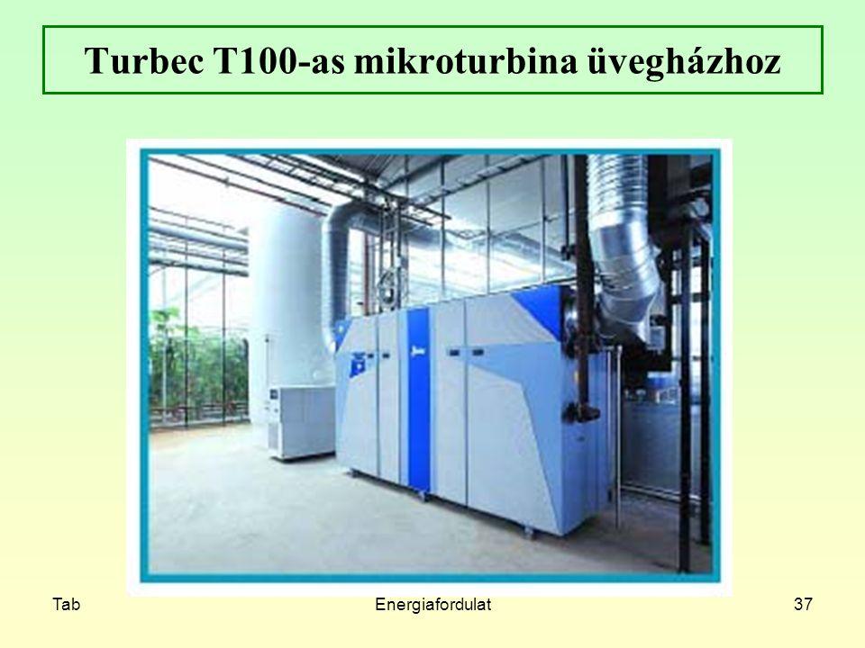 Turbec T100-as mikroturbina üvegházhoz