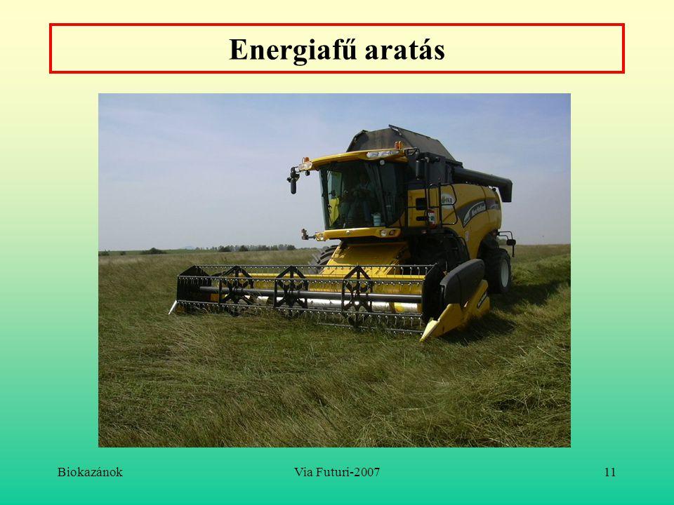 Energiafű aratás Biokazánok Via Futuri-2007