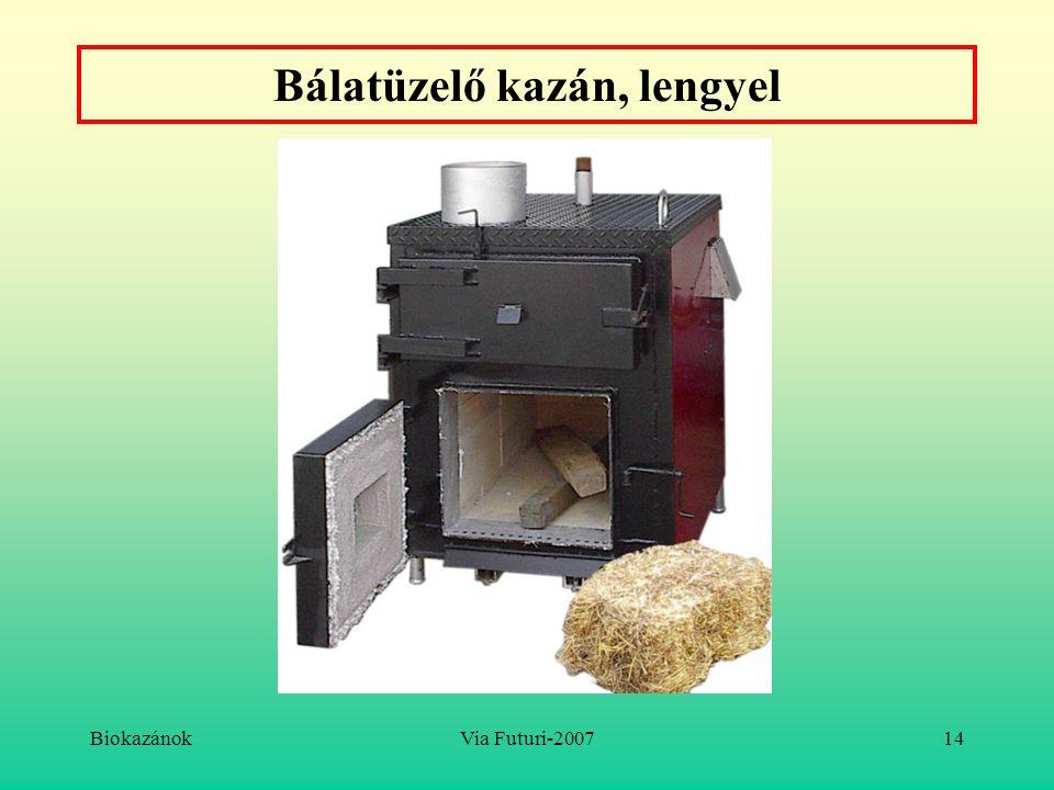 Bálatüzelő kazán, lengyel