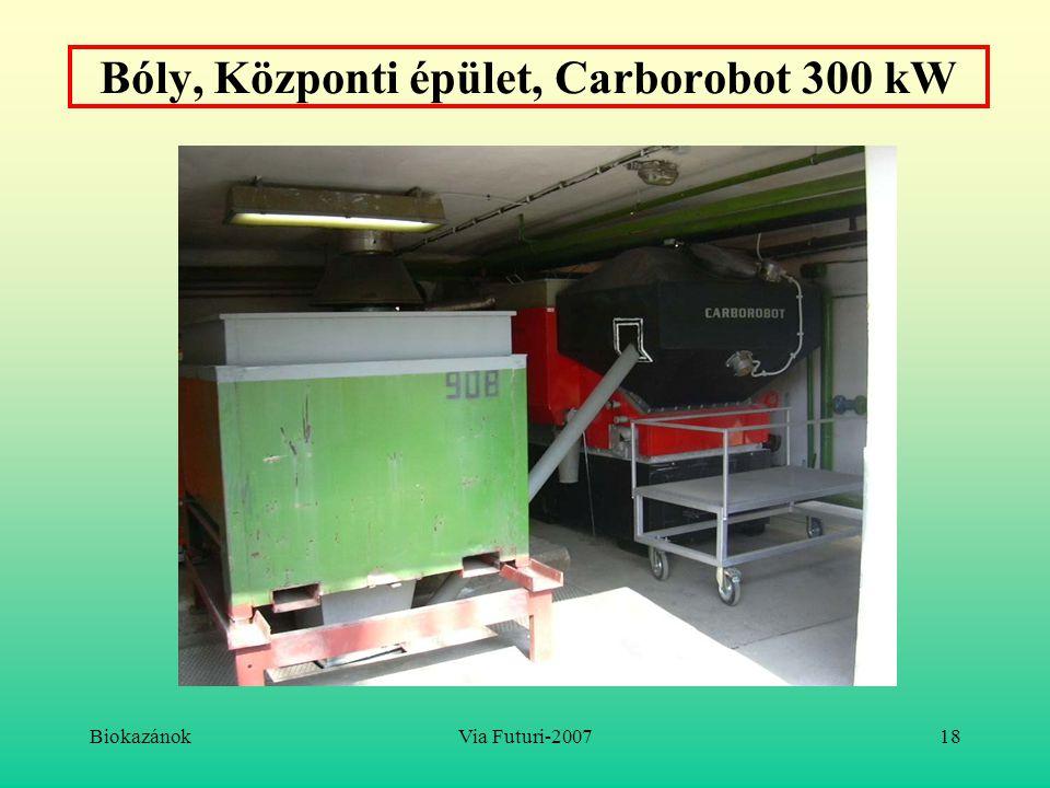 Bóly, Központi épület, Carborobot 300 kW